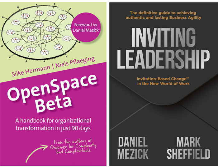 OpenSpace Beta & Inviting Leadership